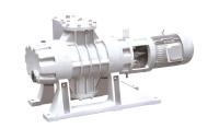 EVR-1000 Wälzkolbenpumpe