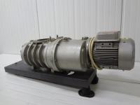 EH500A Rootspumpe